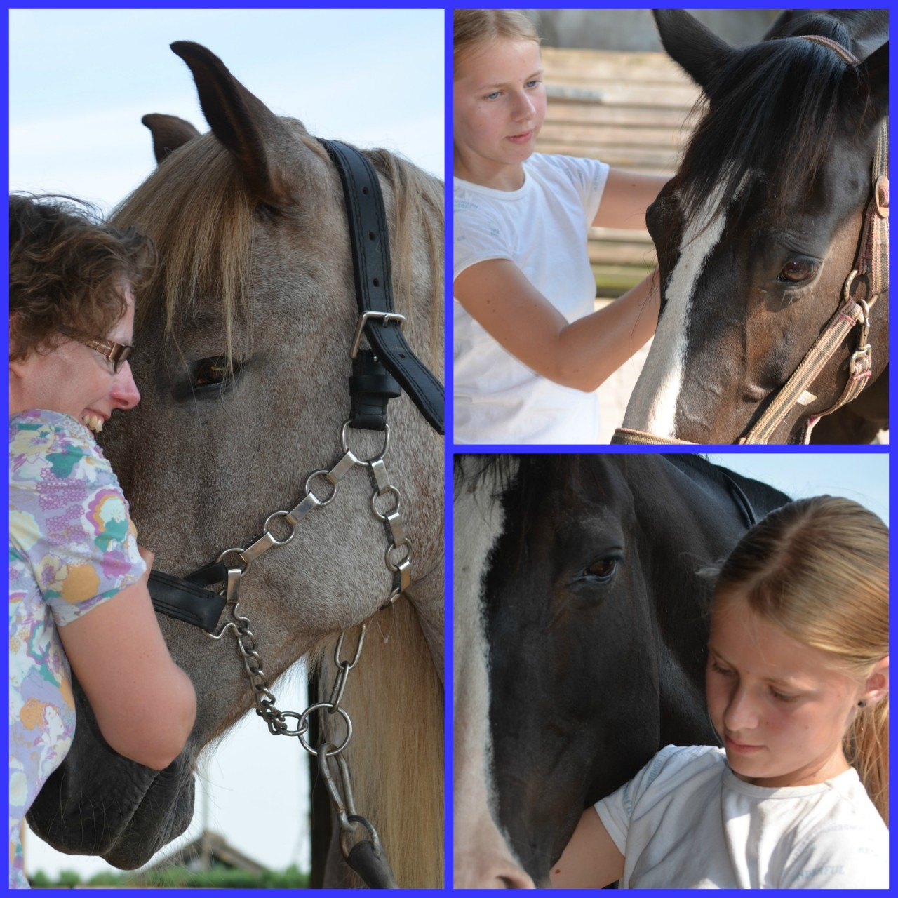 Equine Assisted Coaching A helping Horse